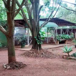 área para restaurante próximo a Araraquara